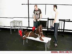 Bound boxer.http://www.general-erotic.com/sh
