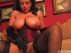 Provocative brunette milf in sexy lingerie and stockings with gloves teases