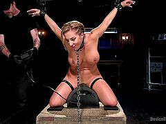 Submissive wife ass drilled in dirty BDSM sex play