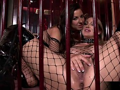 Mandy bright and maria belucci extreme dildo play